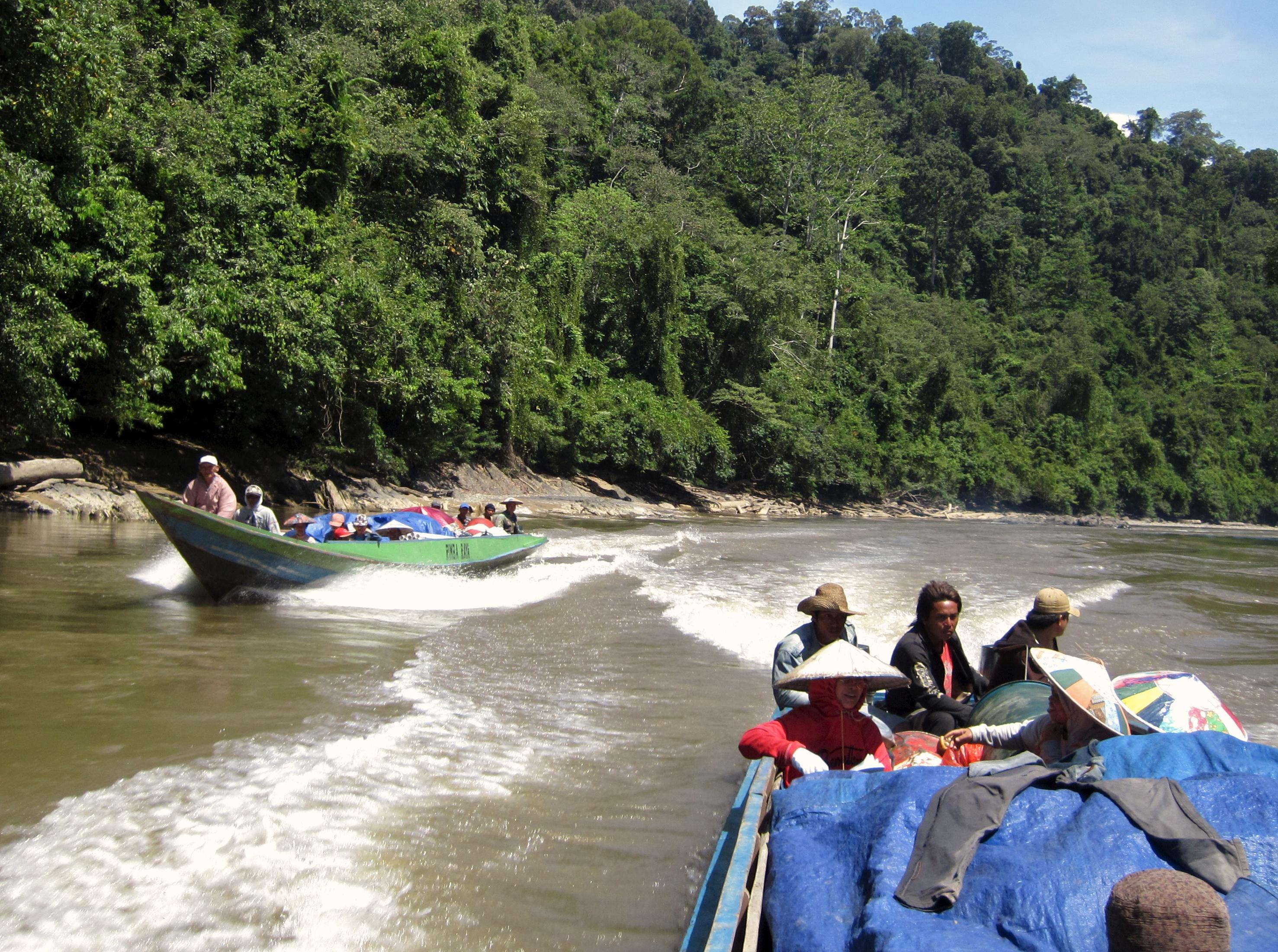 Oost Kalimantan: tropische eilanden en jungle