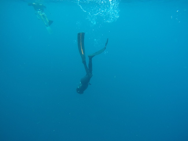 Laurent freediving to ship wreck Chien tong St. Eustatius to catch a turtle