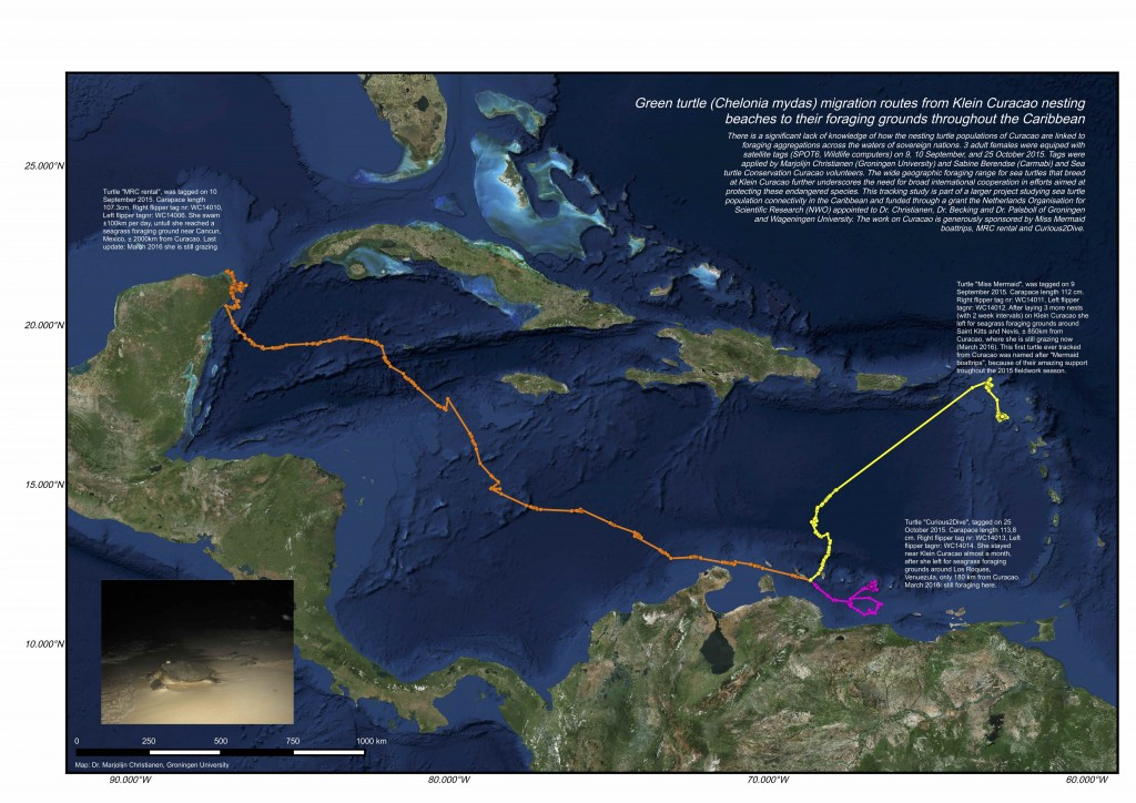 map_curacao tracking_Christianen_300s